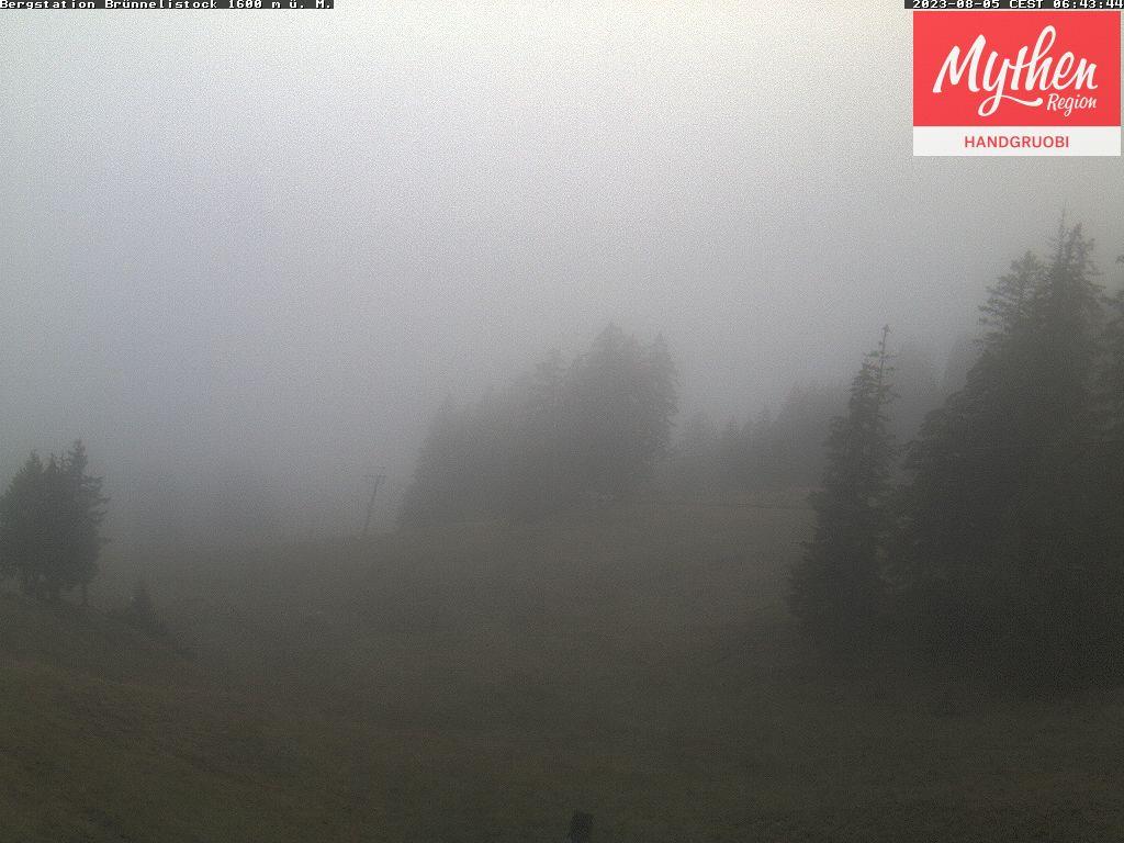 Zwäcken Webcam